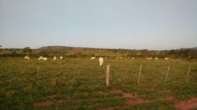 Fazenda Guiratinga MT 6.080 Ha - Foto 3
