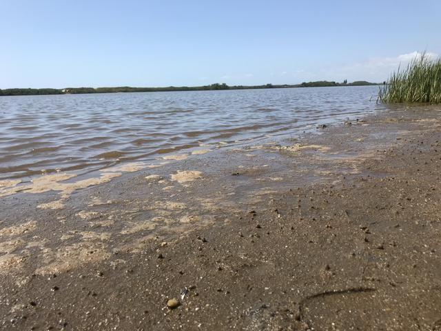 Terrenos ou sobrado em Barra Velha Itapocu lote - Foto 7