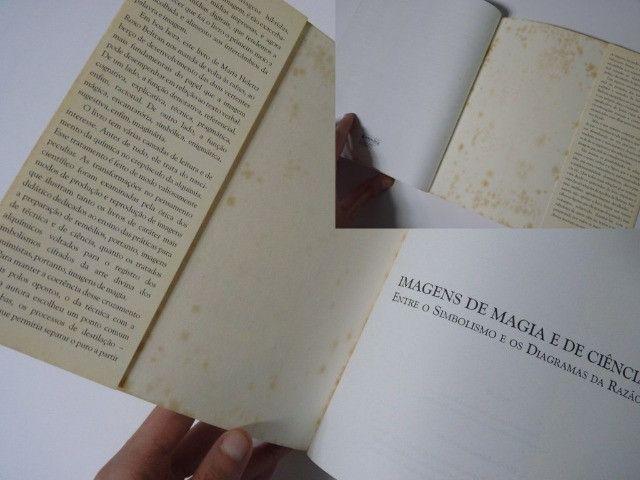 Imagens de Magia e de Ciência (Maria Helena Roxo Beltran) - Foto 4