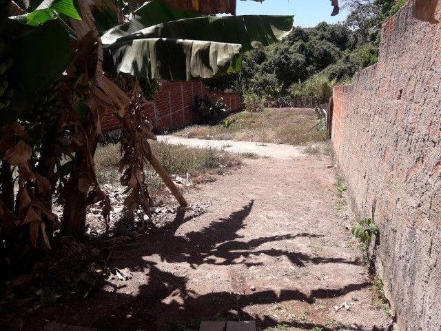 Rua 1 Colonia Agricola Samambaia - Foto 8