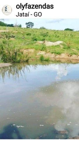 Fazenda Lavoura   Jatai-GO   37.5 Alqueires   Oportunidade  - Foto 5
