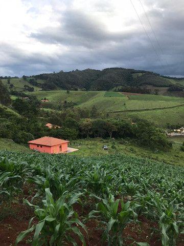 Chácara perfeita com casa em Delfim Moreira - Foto 3
