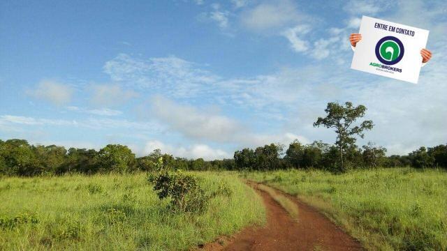 Fazenda na região livramento - Foto 12