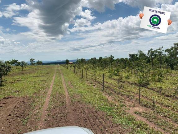 Fazenda 100 ha região de bom jardim - Foto 3