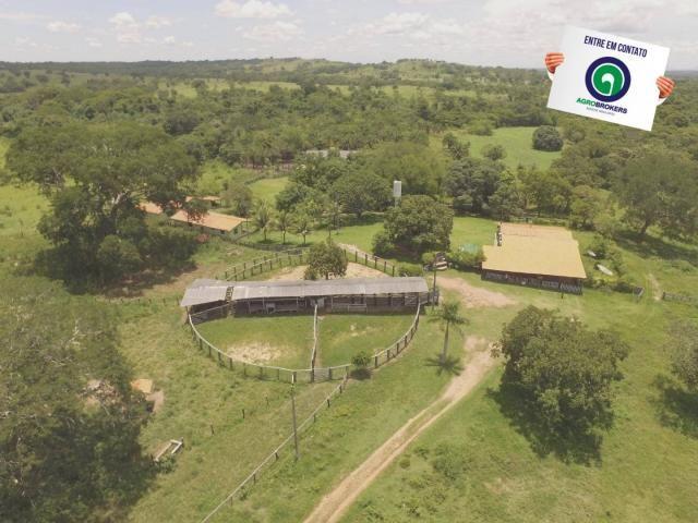 Fazenda 162 ha região de acorizal - mt - Foto 3