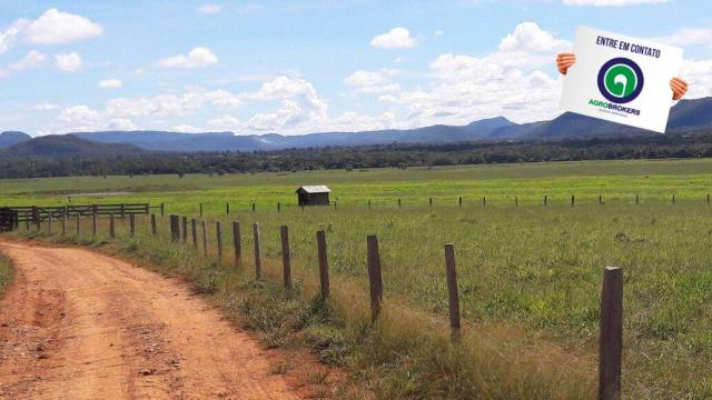 Fazenda 1.650 ha sentido caceres - Foto 2