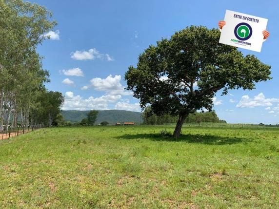 Fazenda 362,27ha acorizal - Foto 4