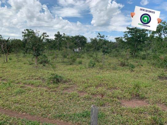 Fazenda 100 ha região de bom jardim - Foto 2