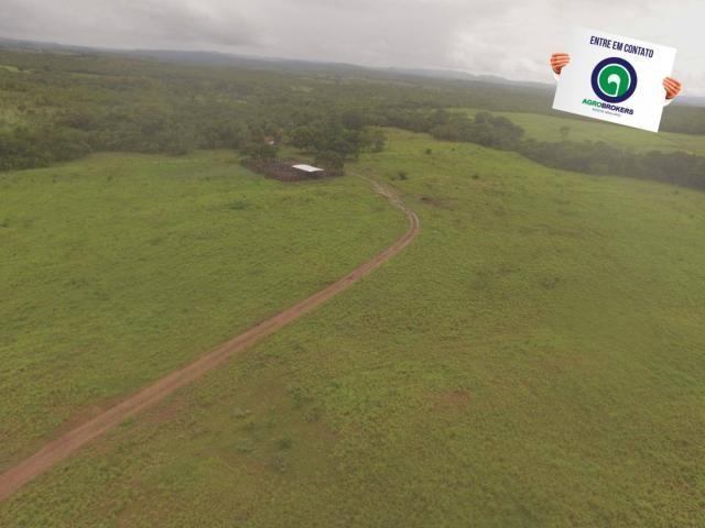 Fazenda 700 ha região do manso - Foto 8