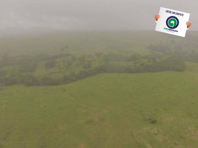 Fazenda 700 ha região do manso - Foto 7