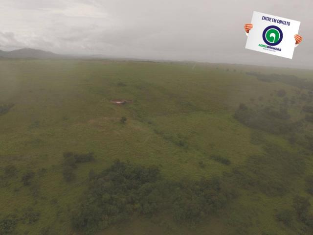 Fazenda 700 ha região do manso - Foto 10