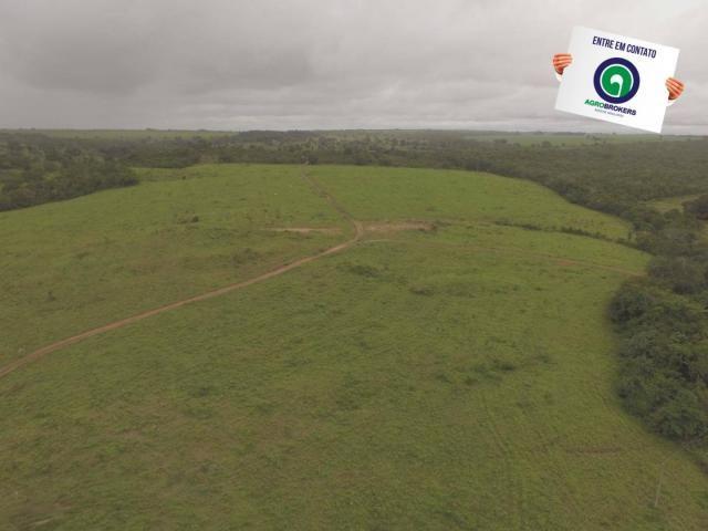 Fazenda 700 ha região do manso - Foto 5