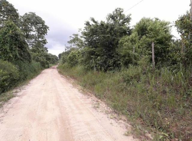 Terreno agrícola (Não tem igarapé) - Foto 3
