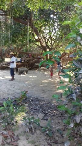 Vendo uma terra pertinho do arraia 13 alqueiro - Foto 14
