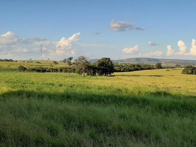 Fazenda Guiratinga MT 6.080 Ha - Foto 16