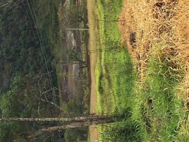 GE Mairiporã 500m2 lindo terreno por R$10.000 de entrada.GE - Foto 5