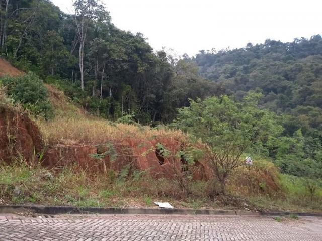 Terreno residencial - águas claras - loteamento independência