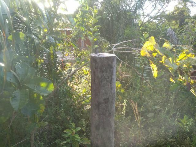 Terreno no Distrito de Curralinho, próximo a Sauípe - Foto 2