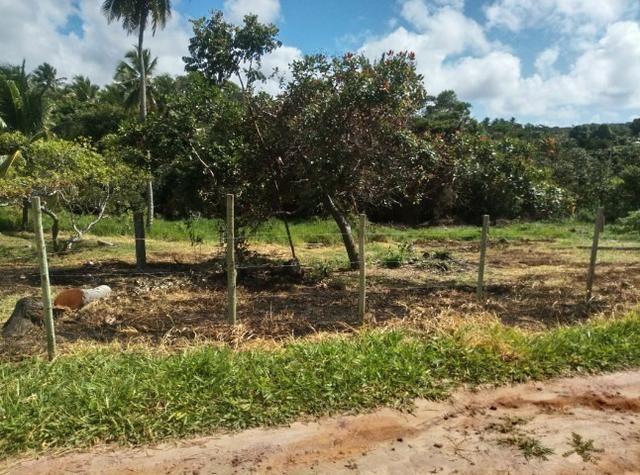 Oportunidade. Terreno 250m próximo linha verde, entre Praia do Forte e Imbassai - Foto 4