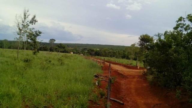 Fazenda Ribeirão - Foto 14
