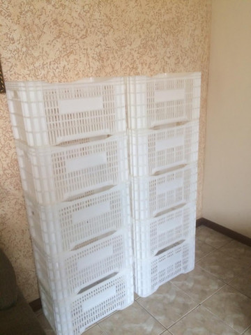 Kit com 10 caixas plásticas branca natural para câmara fria 60l - Foto 2