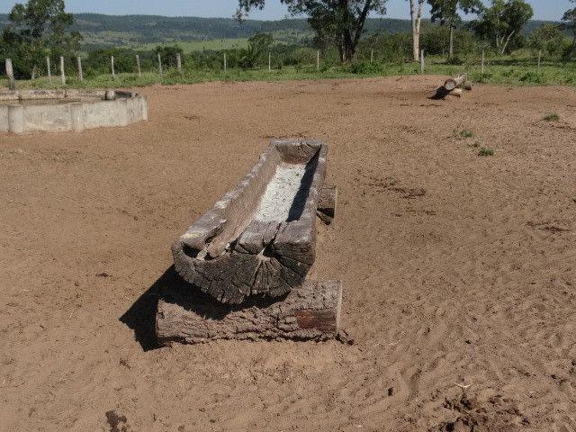 Fazenda de Pecuária 917 hectares - Foto 15