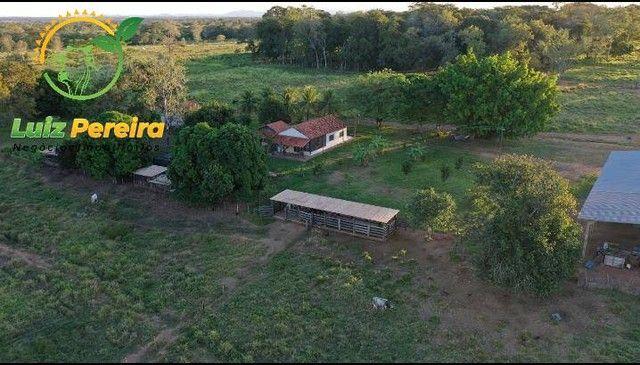 FAZENDA À VENDA EM MIRANDA - MS - 1.180 HECTARES (DUPLA APTIDÃO) - Foto 2