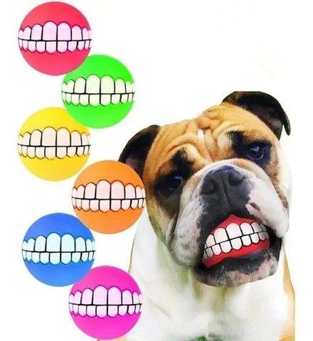 Bolinha Com Dentes Para Cachorro - Sorriso Pet - Foto 6