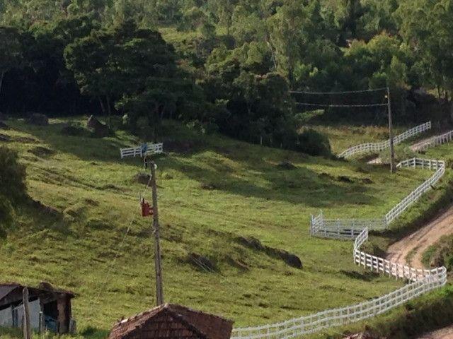 Chácara perfeita com casa em Delfim Moreira - Foto 7