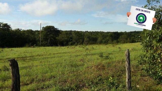 Fazenda na região livramento - Foto 14