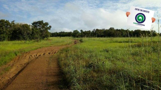 Fazenda na região livramento - Foto 5