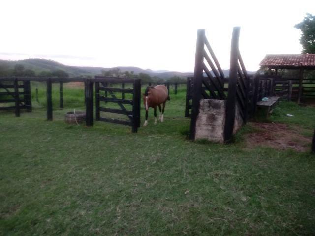 Fazenda em Unaí - MG - Foto 7