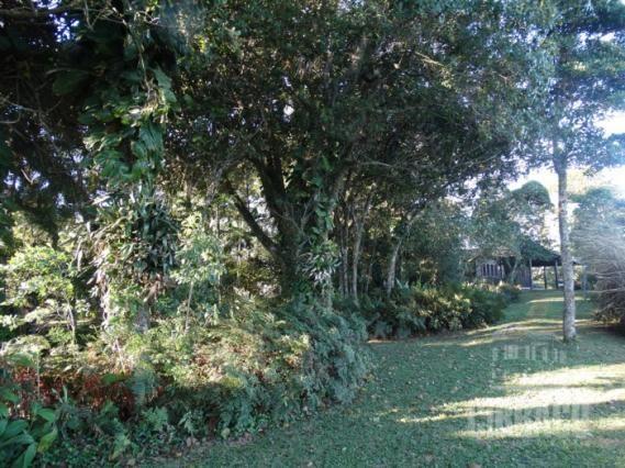 Terreno à venda em Pontal da figueira, Itapoá cod: * - Foto 3