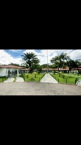 Jazigo Parque da Colina - Foto 3