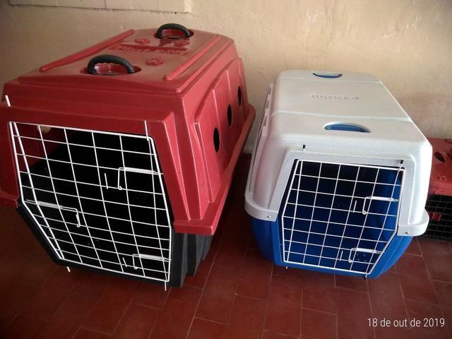 Caixa de Transporte Aéreo N5 ( Cães de Grande Porte )