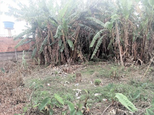 Lote com Casa simples atrás da fundação Bradesco, lote 800 metros quadrados, com iptu - Foto 13