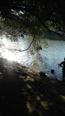 Vendo uma terra pertinho do arraia 13 alqueiro - Foto 12