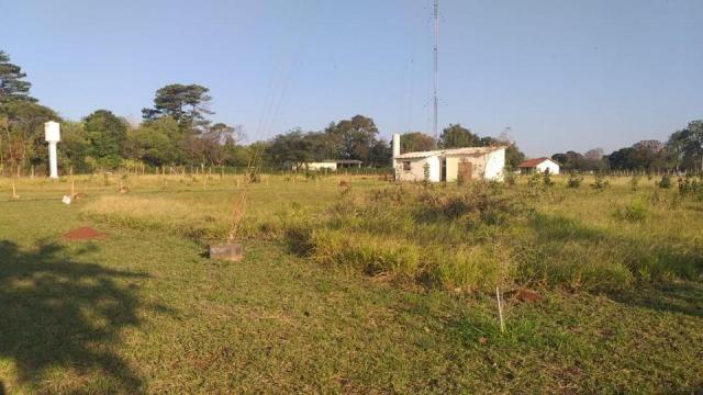 Área Proxima a UFMS - Foto 16