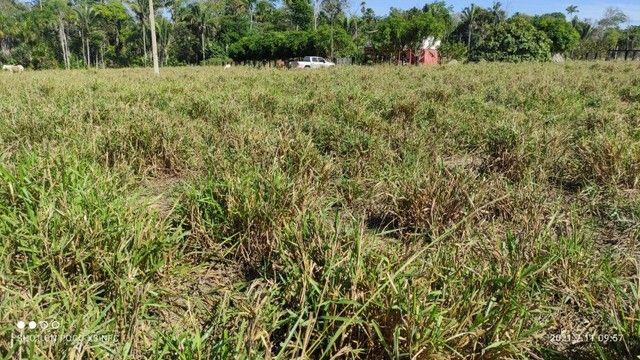 Vende-se Fazenda à 49 km de Porto Velho área com 115 hectares  - Foto 14