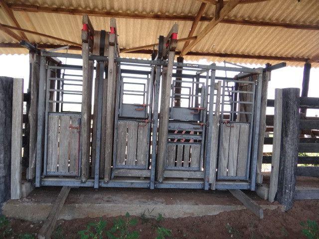 Fazenda de Pecuária 917 hectares - Foto 2