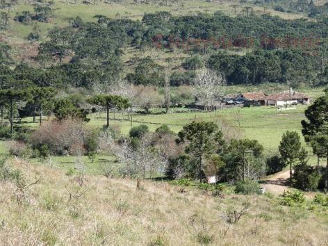 Fazenda em Urubici - Foto 4