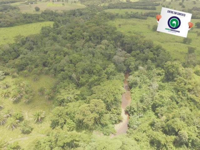 Fazenda 162 ha região de acorizal - mt - Foto 11