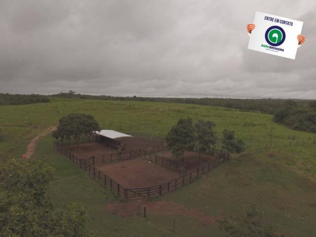 Fazenda 700 ha região do manso - Foto 2