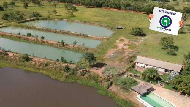 Fazenda 512 ha em livramento - Foto 2