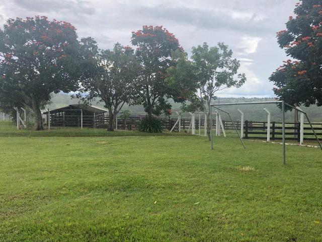 Nova Taquari MT Fazenda a 60 km da cidade com 2.480 hectares em pasto - Foto 12
