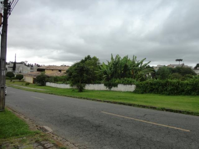 Terreno para alugar em Vista alegre, Curitiba cod:02291.003 - Foto 2