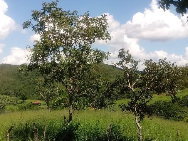 Fazenda em Unaí - MG - Foto 15
