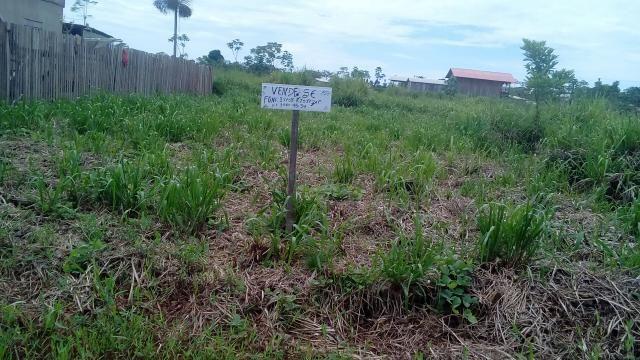 Vendo um terreno medindo. 12×25. no bairro Leo poldina. Há 100 metro da BR - Foto 2