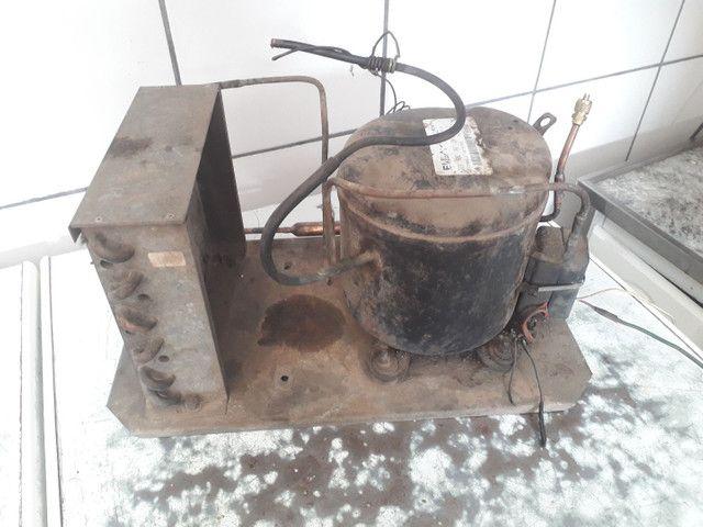 Compressor elgin TCA-1022 / termostato / 4 prateleira de refrigerador