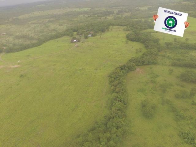 Fazenda 700 ha região do manso - Foto 12